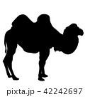 らくだ ラクダ 駱駝のイラスト 42242697
