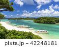 川平湾 夏 海の写真 42248181
