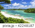 川平湾 夏 海の写真 42248187