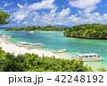 川平湾 夏 海の写真 42248192