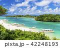 川平湾 夏 海の写真 42248193