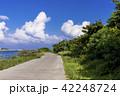 石垣島の公園 42248724