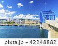 石垣島の港 42248882