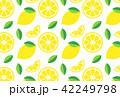 レモン フルーツ 果物のイラスト 42249798