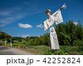 奈良県 明日香 初秋の里山 彼岸花と田んぼ 案山子ロード 42252824