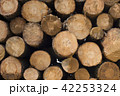Wood log pile background for lumber industry 42253324
