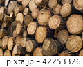 Wood log texture of wooden tree trunks 42253326