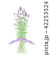 白バック ラベンダー 花のイラスト 42253524