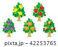 果物 フルーツ 木のイラスト 42253765