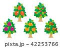 果物 フルーツ 木のイラスト 42253766