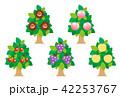 果物 フルーツ 木のイラスト 42253767