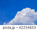 夏空 青空 雲の写真 42254653