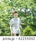 ミドル女性 ゴルフ スポーツ イメージ 42255042