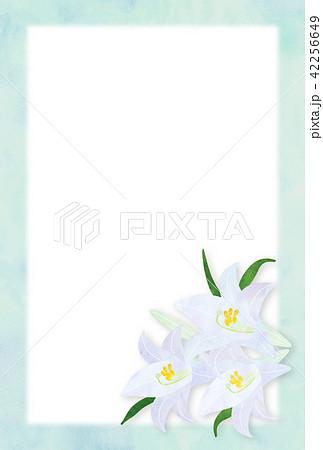 百合の花 背景 42256649