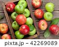 リンゴ りんご アップルの写真 42269089