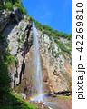 万緑の米子大瀑布(不動滝) 42269810