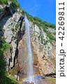 万緑の米子大瀑布(不動滝) 42269811