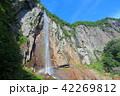 万緑の米子大瀑布(不動滝) 42269812