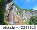 万緑の米子大瀑布(不動滝) 42269813
