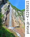 万緑の米子大瀑布(不動滝) 42269815