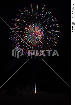 冬花火 winter fireworks 42273697