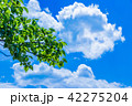 青空 雲 空の写真 42275204