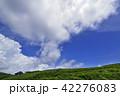 高原 夏 雲の写真 42276083
