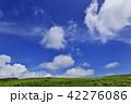 高原 夏 雲の写真 42276086
