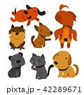 こいぬ 仔犬 子犬のイラスト 42289671