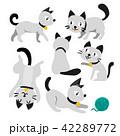 ねこ ネコ 猫のイラスト 42289772