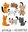 ねこ ネコ 猫のイラスト 42289782