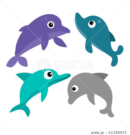 dolphin vector collection design 42289935