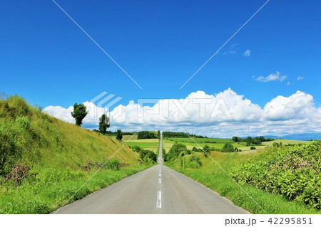 北海道 青空の美瑛 ジェットコースターの道 42295851