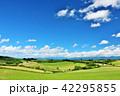晴れ 北海道 美瑛の写真 42295855