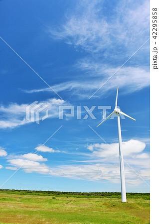 北海道 青空と風力発電 42295858