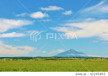 北海道 青空のサロベツ原野と利尻富士 42295863
