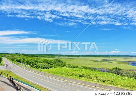 北海道 青空の霧多布湿原 42295869