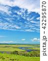 青空 雲 湿原の写真 42295870