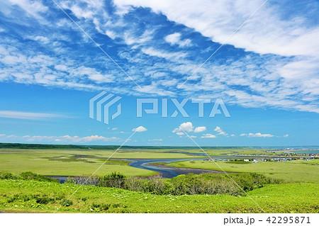 北海道 青空の霧多布湿原 42295871