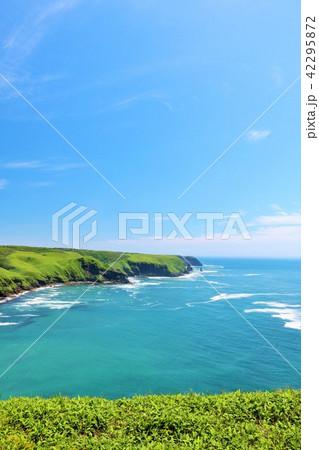 北海道 青空の大地と大海原 42295872