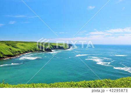 北海道 青空の大地と大海原 42295873