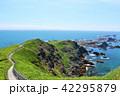 海 水平線 北海道の写真 42295879