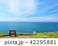 青空 海 水平線の写真 42295881