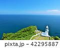 海 水平線 灯台の写真 42295887