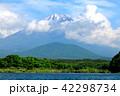精進湖 富士山 夏の写真 42298734