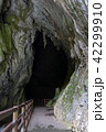 秋芳洞 入口外から 42299910