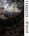 秋芳洞 42299911