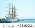 海王丸(6) 42302281