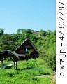 白川郷(6) 42302287