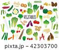 野菜のイラストセット 42303700